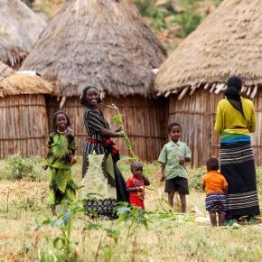 Capacity development for market-oriented agriculturaldevelopment